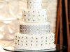 alysiaandtuxweddingcake