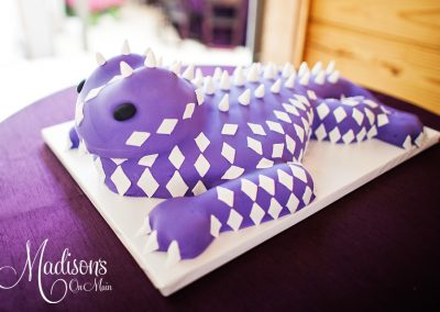Madisons_On_Main_Cakes_Grooms_Cakes-054